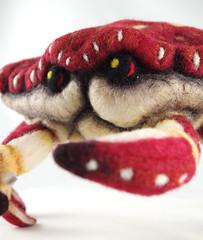 Felt Crab 5