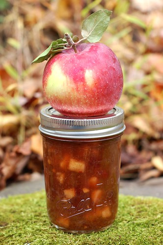 Apple Rhubarb Chutney by Eve Fox, Garden of Eating blog, copyright 2011