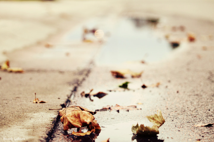 rainy autumn days