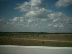 Drought of 2011, Lake Lavon