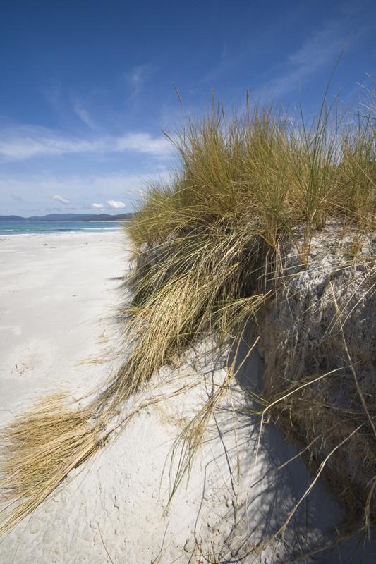 EC_Beach2