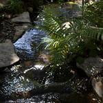 IMG_9727.jpg thumbnail