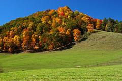 IMG_4137_edited-1 (Mysophie08) Tags: autumn landscape virginia thechallengefactory herowinner gamesweepwinner comersrockgraysoncova