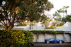The Bush (Danh Phan) Tags: blue wheels corvette modulare