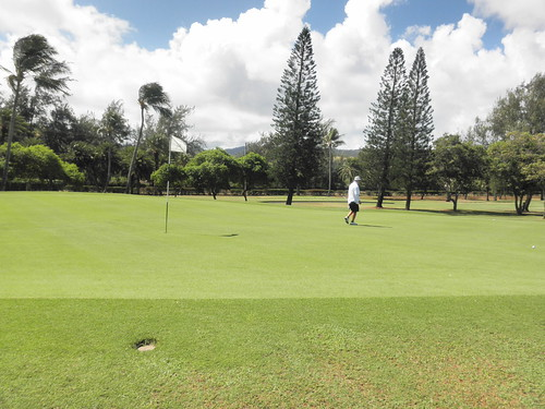 Turtle Bay Colf Course 155