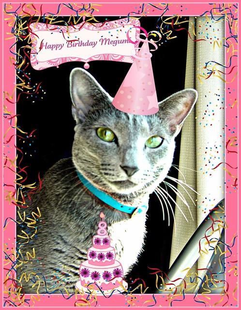 ~ Happy Birthday Megumi ~