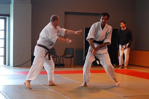 6299938278 7ed9edce8d London & Hove Shodokan Aikido Festival 2011