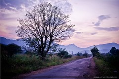 The Lonely Road !!! (girish_suryawanshi) Tags: road trees sunset sky plants mountains green nature colors grass leaves clouds photography evening landscapes nikon dj s explore gary lonely tamron f28 pune girish 2875mm nanegaon suryawanshi d7000