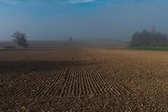 Fog landscapes - 10/13  (KF-Photo) Tags: trees field mood nebel getty bume acker morgenstimmung kirchentellinsfurt fogmood nebelstimmung