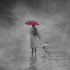 Walking in the Rain (h.koppdelaney) Tags: life pink november woman dog mist art fall rain fog digital umbrella photoshop walking twilight nebel symbol path picture philosophy metaphor stillness psyche symbolism psychology archetype conscious zwielicht thelittledoglaughed koppdelaney