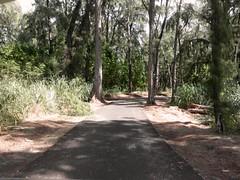 Turtle Bay Colf Course 224b