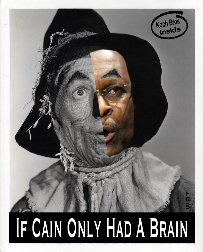 IF CAIN ONLY HAD A BRAIN