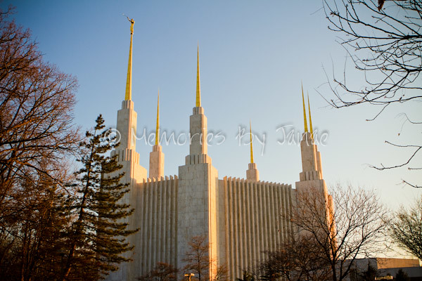 Washington D.C. Vintage LDS Temple Prints -2-3