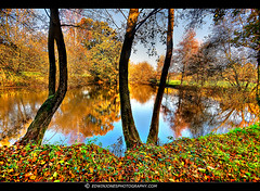 Autumn Lake Pulborough (Edwinjones) Tags: pictures uk blue autumn trees light red summer england sky sun lake color colour reflection green fall texture nature water leaves yellow clouds forest woodland reflections landscape photography sussex countryside photo pond warm walks skies colours westsussex photos walk sony scenic picture sigma wideangle pic foliage trunk greenery dslr hdr highdynamicrange southdowns ramble sussexdowns autumnleaf photomatix a700 treecrown woodlandwalk pulborough tonemapped sonyalpha