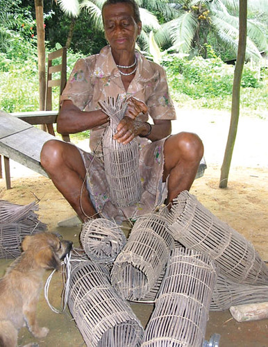 Woman making fish trap, Cameroon. Photo by Randall Brummett, 2003