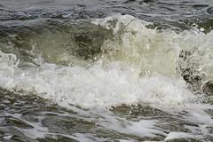 Wave (sandy richard) Tags: longisland beaches wildwood wildwoodstatepark sandyrichard sandrarichard