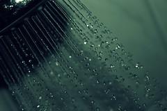 (elisabeths photography) Tags: blue macro water shower drops focus waterdrop wasser bokeh turquoise snapshot blau makro wassertropfen tropfen fokus dusche trkis schnappschuss
