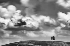 val d'orcia skyline (nicola tramarin) Tags: longexposure sky bw italy nature alberi clouds italia nuvole natura cielo tuscany toscana valdorcia cypresses bianconero biancoenero cipressi monocromatico lungaesposizione nicolatramarin