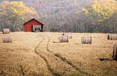 It's The Way I Roll (nailbender) Tags: red mist chevrolet grass car fog barn farm birdhouse haybale farmlife nailbender