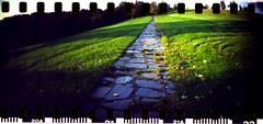 (DaveLawler) Tags: film stone analog 35mm landscape kodak path epson sprocketholes v700 colorplus davelawler flickriver sprocketrocket