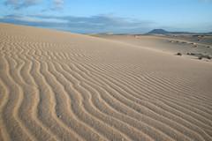 Desert (MacDor Photography) Tags: sunset landscape sand pattern desert canary goldenhour fuertaventura corralejo playasgrandes