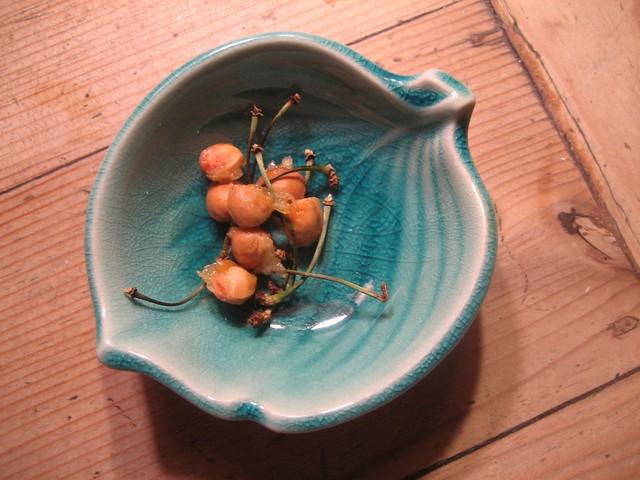 cherry detritus photo