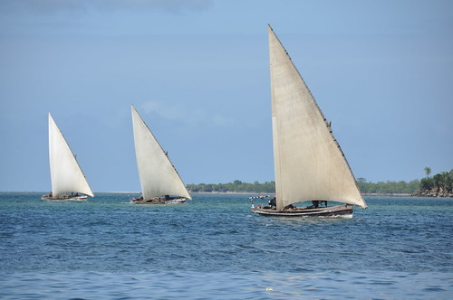 Dhows off Tumbe beach