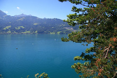 (JESIE of GROTTO TULA) Tags: switzerland thunersee    stbeatushoelen