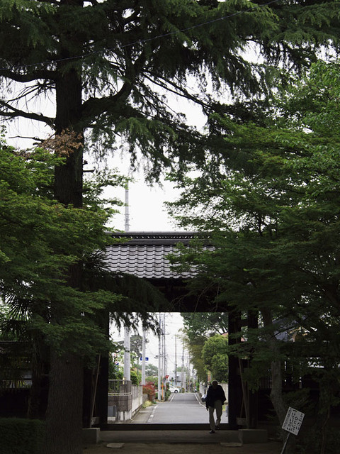 110503_101846_太田_園福寺_十二所神社