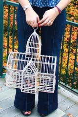 Outfit - Twenty8twelve jeans, vintage birdcage