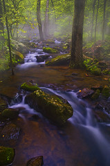 Evening mist at Collins Creek (photogg19) Tags: mist fog creek river nikon stream arkansas ozark hebersprings collinscreek d7000