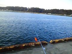 サケ釣りに到着