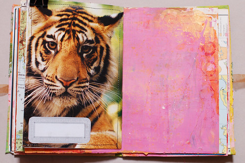 Journal of Scraps I: tiger power