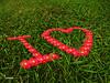 I love أنا أحب (hassanjber) Tags: green love grass design peace natural you تصميم على الحب السلام أنا i احبك الاخضر العشب الطبيعي