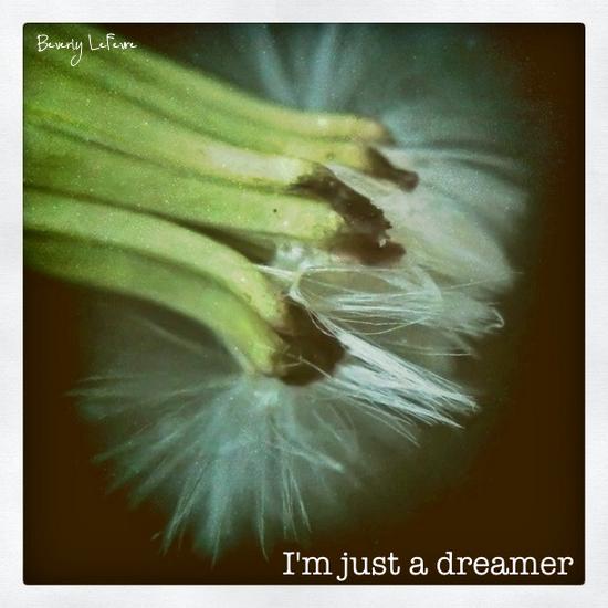 I'm just a dreamer