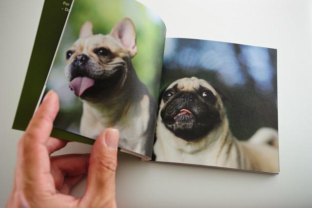 photobook demo-3