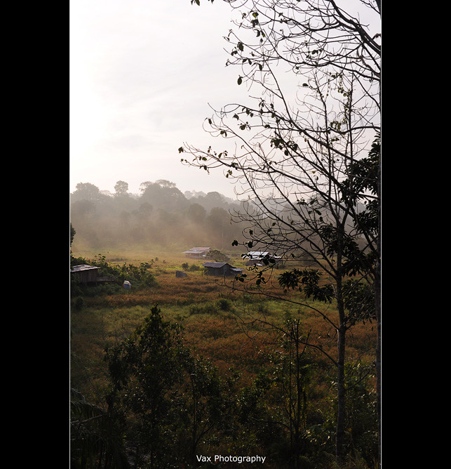 brunei-scene-15