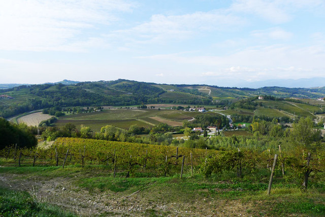 Valley near Dolegna del Collio