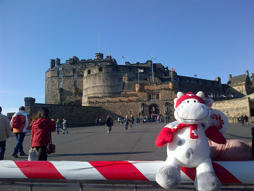 Cowzen at the castle in Edinburgh