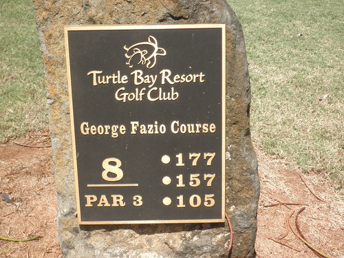 Turtle Bay Colf Course 203