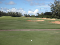 Turtle Bay Colf Course 282
