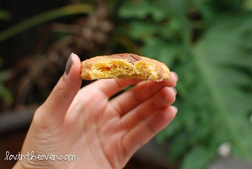 pumpkinsnickerdoodles-8