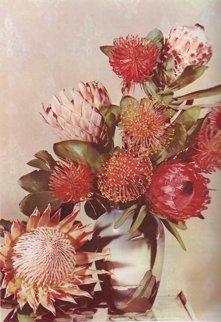 vintageflowers1