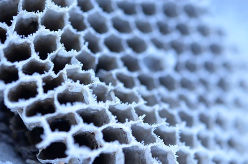 frosty comb_128