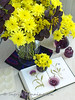 Complementary Colours - Yellow and Violet (Of Spring and Summer) Tags: wood flowers stilllife inspiration flower art home nature glass floral leaves vintage garden book design three leaf bottle purple bottles linen antique buttons interior creative violet books fabric antiques cottagestyle vases fabrics oldbooks tablecloths shabbychic ofspringandsummer prettystems