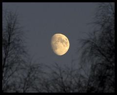 Mooning... (Christian Hacker) Tags: moon evening scotland perthshire moonlight dunkeld canoneos400d lemongrater