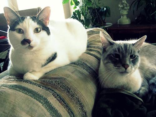 Olympia and Rowan