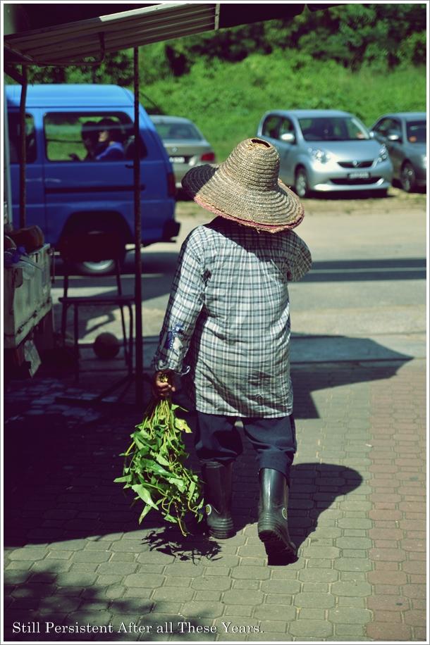 Still Persistent Kangkung Seller