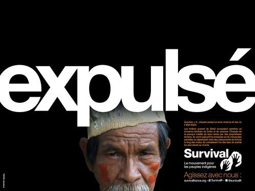Survival - Expulsé