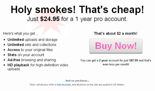 2.just $24.95 for a 1 year pro account